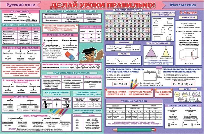 Плакат учебное пособие ГИГАНТ.