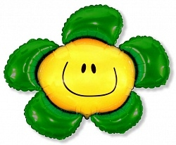 , Солнечная улыбка, Зеленый