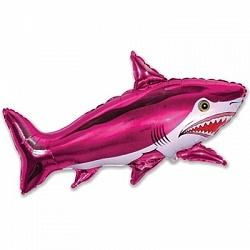 Страшная акула, Фуше,